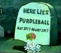 RIPPurdleball